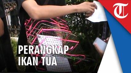 Pengunjukrasa Reklamasi Teluk Jakarta Diberikan Perangkap Ikan Tua, Ini Artinya