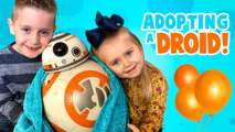 We're Adopting BB-8- Star Wars Hero Droid BB-8 by SpinMaster-