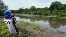 Ce crocodile poursuit un pêcheur et vole son poisson au bout de sa canne à pêche