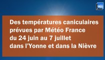 Chaleur : des températures caniculaires dans l'Yonne et la Nièvre pendant au moins 15 jours