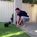 Cet homme apprend à son petit bulldog comment sauter. Trop mimi !