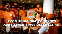 LA CAN EN OFF : LE COMITÉ NATIONAL DE SOUTIEN AUX ÉLÉPHANTS MOBILISÉ EN EGYPTE