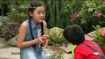 Đánh Cắp Giấc Mơ Tập 11 - Bản Chuẩn - Phim Việt Nam VTV3 - Phim Danh Cap Giac Mo Tap 12 - Phim Danh Cap Giac Mo Tap 11