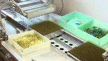 Laboratoires Boiron à Montrichard : les salariés inquiets