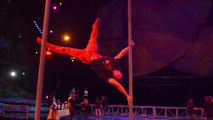 IR On Location: THE ARTISTS OF 'MYSTERE' [Cirque du Soleil/Walt Disney Studios Home Entertainment]