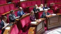 1ère séance : Compétences  collectivité européenne d'Alsace - Lundi 24 juin 2019