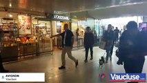 Arrivée de Sophie Turner et Joe Jonas à la gare d'Avignon TGV