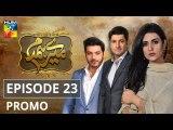 Mere Humdam Episode 23 Promo HUM TV Drama
