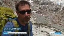 Dans les Alpes, le glacier blanc du Massif des Écrins disparaît