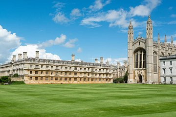 From which universities do millionaires come?