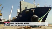 'Hidden Hunger' and micro-nutrient deficiencies the biggest crisis in N. Korea: WFP
