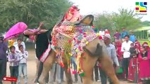 Marwadi Marriage dj song || Indian Wedding Dance performance 2019 || Indian Traditional Dance || DEVAR BHABHI DANCE VIDEO || MIA KHALIFA