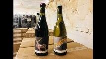 Ils font leur propre vin dans un ancien blockhaus allemand à Bordeaux