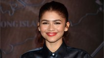 Spider-Man Star Zendaya Reveals How Avengers Snap Affected MJ