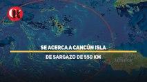 Se acerca a Cancún isla de sargazo de 550 km