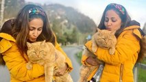 Hina Khan enjoys with cute Cat during Switzerland vacations; Check out | FilmiBeat