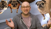 Josh Gondelman Freestyles Pug Songs