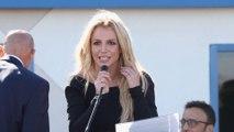 Verleumdung: Britney Spears' Vater verklagt Blogger