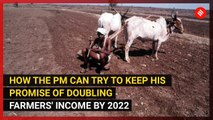 What should be done to double Indian farmers income by 2022