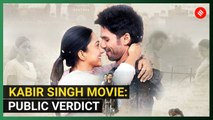Kabir Singh: Audience Review