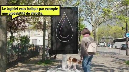 Le poteau qui fait le bilan de santé ⚕️⚕️ des chiens