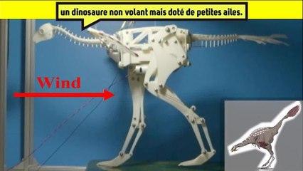 Du nouveau ️sur l'origine du vole chez les dinosaures!