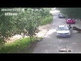 Woman steps out of car, gets mauled by tiger in China