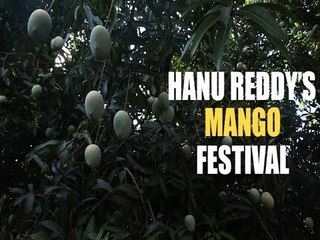 At this Chennai farm, you can pick your mangoes and eat them too!