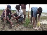Villagers shocked by 'fish rain' in Vijayawada