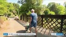 Infrastructures : 25 000 ponts sont dans un état préoccupant en France