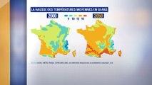 Avec une hausse des températures de 2°C, à quoi ressemblera la France en 2050?