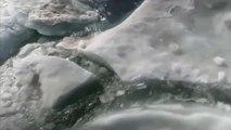 "Le monde instaure un ""apartheid climatique"""