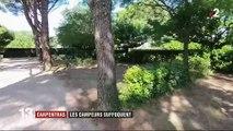 Carpentras : les vacanciers désertent le camping