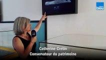 Catherine Cretin, conservateur du patrimoine nous parle de cette représentation de glouton
