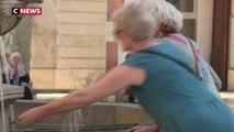 Canicule : des records de chaleur en France
