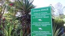 Conheça o campus de conscienciologia em Domingos Martins