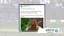 Socialeyesed - Sri Lanka semi-final hopes dented