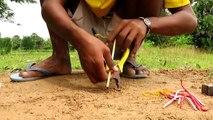 La Technologie Primitive: Simple BRICOLAGE Oiseau Piège de Faire de Pinces Que le Travail à 100% Par Smart Boy