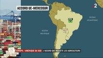 Accord commercial entre l'Europe et l'Amérique du Sud : les agriculteurs s'inquiètent