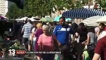 Alsace : la chaleur fait de la résistance