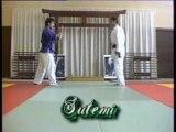 Nihon-Tai-Jitsu