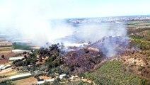 Antalya'da orman yangını: 1 hektar orman alanı kül oldu