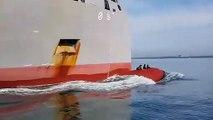 3 otaries sont installées sur le flotteur avant de ce navire !