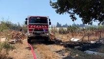 Incendie à proximité de l'aéroport de Marseille-Provence : un hectare de végétation déjà parti en fumée