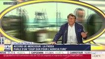 Accord UE-Mercosur: les agriculteurs français et européens doivent-ils se méfier ? - 01/07