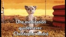 Une méditation guidée avec Christophe André