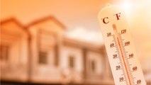 Europe Breaking Temperature Records During Dangerous Heat Wave
