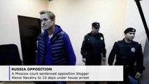 Navalny sentenced to 10 days under house arrest