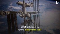 NASA Is Now Allowing Space Tourists on the ISS