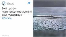 Climat : Antarctique : le mystère de l'année 2014 intrigue les scientifiques